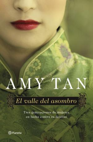 Libro: El valle del asombro Amy Tan