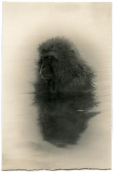 Exposici�n Masao Yamamoto
